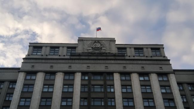 Шолохов призывает вернуть статью за оскорбление в Уголовный кодекс