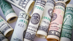 Центробанк нашел 240 финансовых пирамид в России