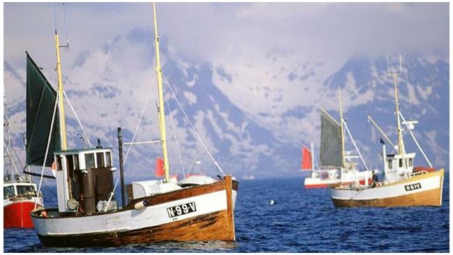 Россия закупила больше всех рыбы у Норвегии