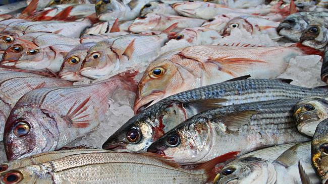 Российские рыбаки выловили 4,9 млн тонн водных животных