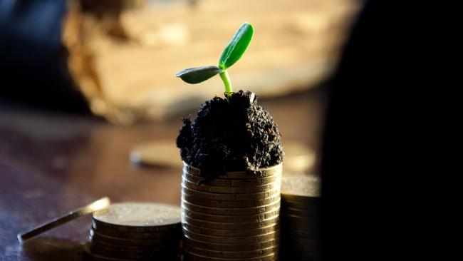 Акции Сбербанка за 3 дня торгов возросли на 14%