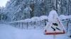 На борьбу со снегопадом в Петербурге брошено 1,5 тыс. ед...