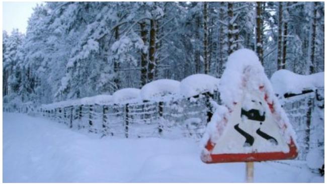 На борьбу со снегопадом в Петербурге брошено 1,5 тыс. единиц техники