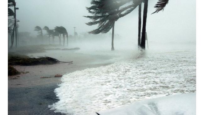 Трамп предложил взрывать ураганы ядерными бомбами