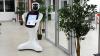 В зоопарке Ростова на работу вышел робот-кассир