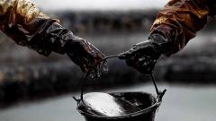 Российская нефть подешевела после загрязнения трубопровода «Дружба»