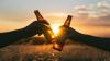 Риск для крафтового: пиво и пивные напитки хотят подверг...