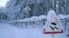 Петербургу не хватает людей и техники для уборки снега
