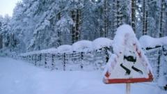 Правительство Петербурга открыло горячую линию по уборке улиц