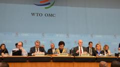 ВТО решила до 20 марта не проводить заседания