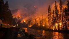 Три региона в Сибири объявили о режиме ЧС из-за лесных пожаров