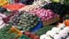Госдума РФ предложила отменить продуктовое эмбарго