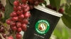 Coffeeshop Company инвестирует в Россию 50 млн евро
