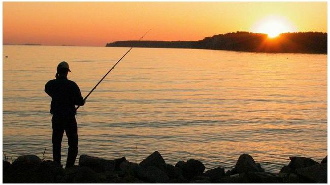Рыбалка как хобби останется бесплатной в России