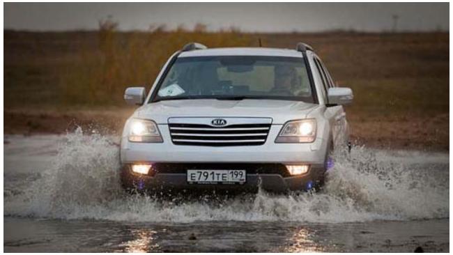 KIA прекратила отгрузку уже оплаченных автомобилей из-за падения рубля