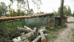 Энергоснабжение в Ленобласти восстановят до конца дня 18 июня