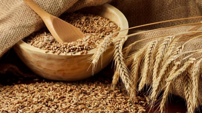 Турция вводит пошлины для российского зерна