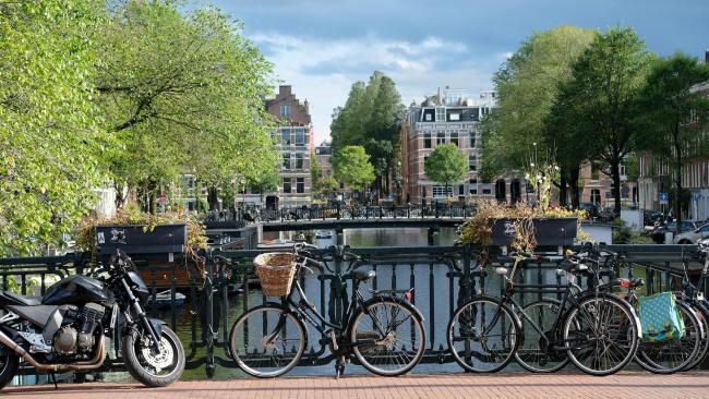 В Голландии зафиксировали позитивный тренд в борьбе с COVID-19