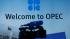 Министры ОПЕК+ рекомендовали нарастить нефтедобычу на 1 млн баррелей в сутки
