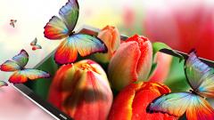 Samsung Electronics получит долю в предприятии Sony по выпуск ЖК-дисплеев