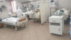 В Петербурге коронавирусом за сутки заболело 258 человек