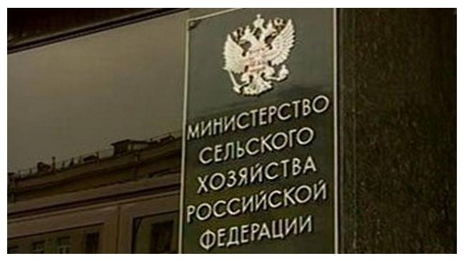 """Минсельхоз создаст сеть оптовых рынков """"Роспродсеть"""""""