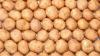 40 тонн белорусской картошки незаконно ввезли в Россию