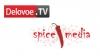 Spice Media и Delovoe.TV проведут круглый стол о проблем...