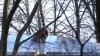 Власти Петербурга обещают закончить ремонт крыш до ...
