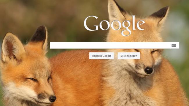 Google заплатил $1 млрд, чтобы стать поисковиком по умолчанию в Firefox