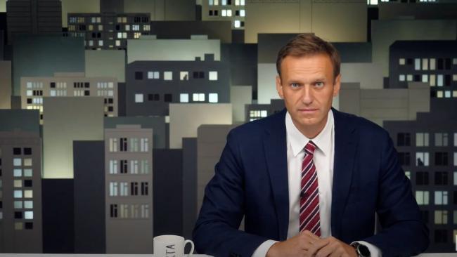 В России опровергли заявление ФРГ о передаче результатов медообследования Навального в ОЗХО