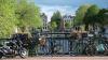 В Голландии зафиксировали позитивный тренд в борьбе ...