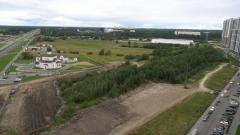 Власти Петербурга объяснили вырубку леса под парковку на Парашютной улице