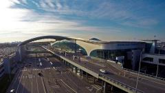 Топ-менеджеров аэропорта Шереметьево уволили из-за задержки выдачи багажа
