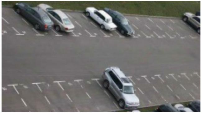 Прокуратура нашла самовольные парковки и автосервисы на Васильевском острове