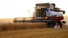 Пострадавшим от засухи в РФ выделили 6 млрд рублей