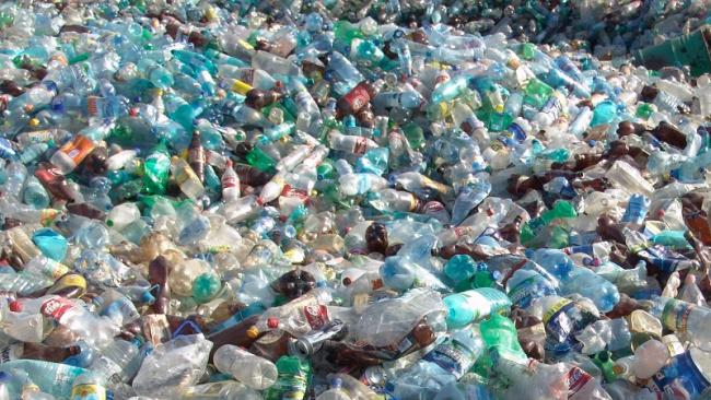 Минприроды намерен запретить пластиковую посуду