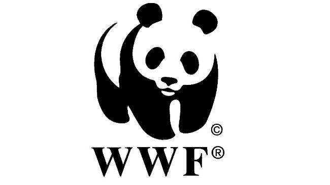 Фонд дикой природы выгоняет короля Испании из-за охоты на слонов