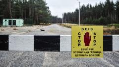 Посольство Эстонии озадачено введением бесплатных электронных виз России