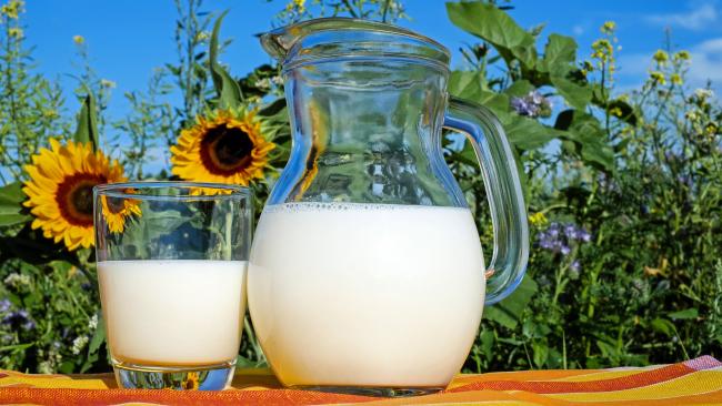 Белорусская молочка: Россельхознадзор вводит запрет на поставку ряда продуктов