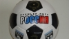 Российские клубы предложили РФПЛ объединить чемпионаты ...
