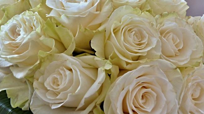 Владимир Путин подарил патриарху Кириллу букет белых роз