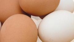 С конца марта все французские яйца будут проштамповывать