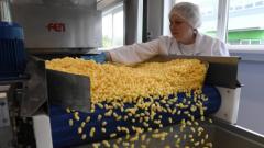 В Пикалево введена новая кондитерская фабрика