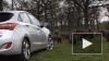 Тестирование нового Hyundai i30 провели 40 обезьян