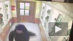 Ограбление ювелирного магазина в Камышине попала на видео