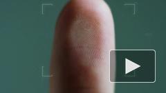Ученые научились определять срок давности отпечатков пальцев