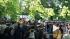 В Пушкине митинговали против гольф-клуба