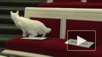 Коты как символ Петербурга