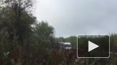На Украине при аварийной посадке Ан-12 погибли несколько человек